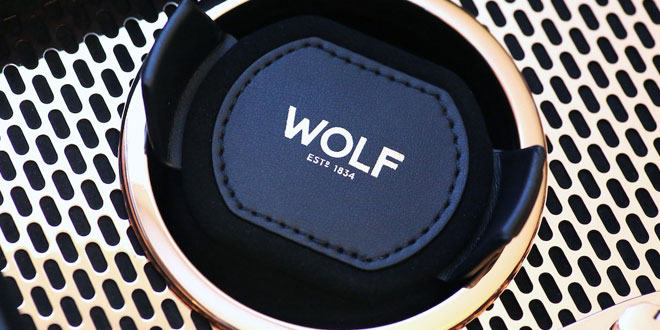 WolfAxis_Featured